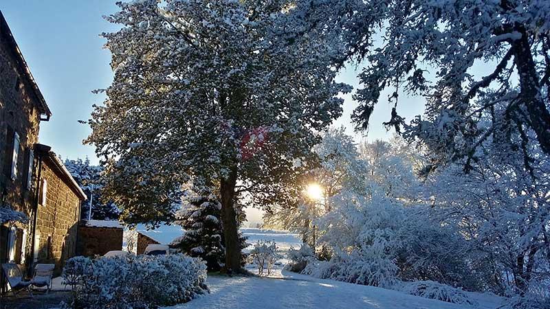 jardin du domaine de rilhac en hiver-hotel romantique ardeche.